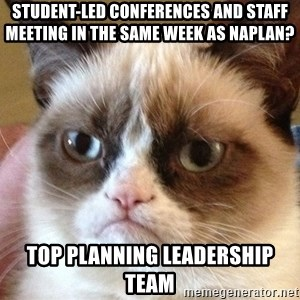 Angry Cat Meme - STUDENT-LED CONFERENCES AND STAFF MEETING IN THE SAME WEEK AS NAPLAN? TOP PLANNING LEADERSHIP TEAM