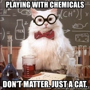 Chemistry Cat - playing with chemicals don't matter. just a cat.