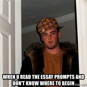 Scumbag Steve - when u read the essay prompts and don't know where to begin