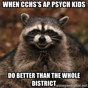 evil raccoon - When CCHS's AP Psych kids do better than the whole district