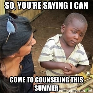 Skeptical 3rd World Kid - So, you're saying I can  Come to counseling this summer