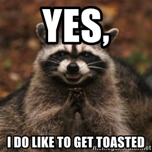evil raccoon - Yes, I do like to get toasted