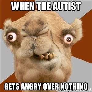 Crazy Camel lol - when the autist  gets angry over nothing