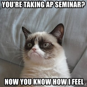 Grumpy cat good - You're taking AP Seminar?  Now you know how I feel