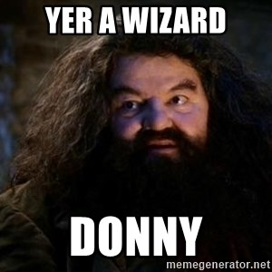 Yer A Wizard Harry Hagrid - Yer a wizard Donny