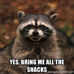 evil raccoon - Yes, bring me all the snacks