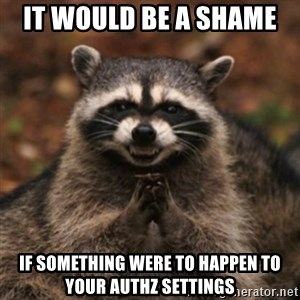evil raccoon - It would be a shame  if something were to happen to your authz settings