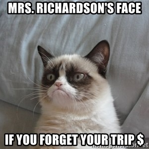 Grumpy cat good - Mrs. Richardson's Face if you forget your trip $