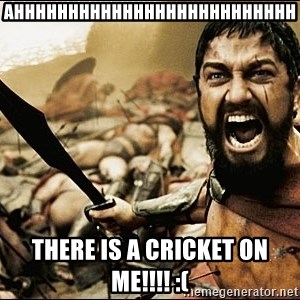 This Is Sparta Meme - AHHHHHHHHHHHHHHHHHHHHHHHHHH there is a cricket on me!!!! :(