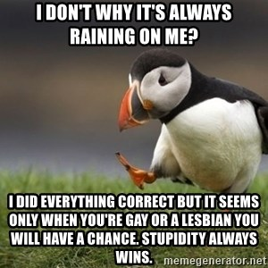 Unpopular Opinion Puffin - i don't why it's always raining on me? i did everything correct but it seems only when you're gay or a lesbian you will have a chance. stupidity always wins.