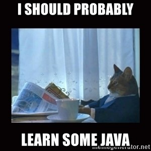 i should buy a boat cat - I should probably learn some java