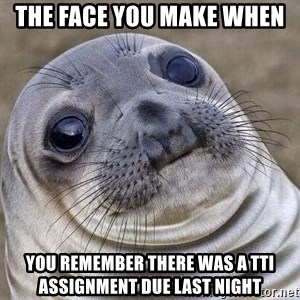Awkward Seal - the face you make when  you remember there was a TTI assignment due last night