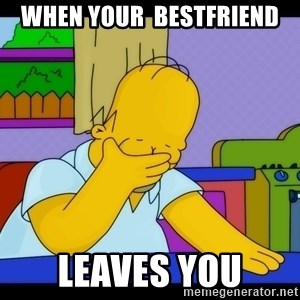 Homer Facepalm - when your  bestfriend leaves you