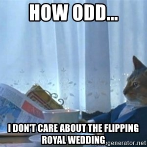 newspaper cat realization - How odd... I don't care about the flipping royal wedding