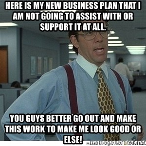 That would be great - Here is my new business plan that I am not going to assist with or support it at all. You guys better go out and make this work to make me look good or else!