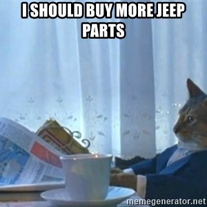 newspaper cat realization - i should buy more jeep parts