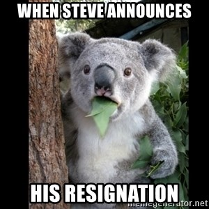 Koala can't believe it - When Steve announces his resignation