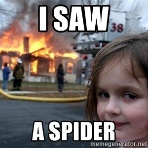 Disaster Girl - I saw A spider
