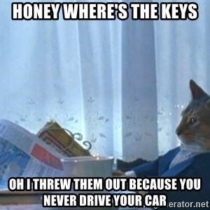 newspaper cat realization - honey where's the keys oh i threw them out because you never drive your car