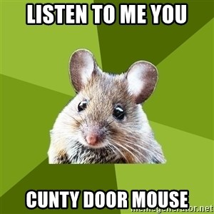Prospective Museum Professional Mouse - Listen to me you Cunty door mouse