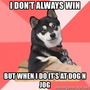 Cool Dog - I don't always win But when I do it's at dog n jog