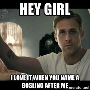 ryan gosling hey girl - Hey Girl I love it when you name a gosling after me