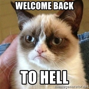 Grumpy Cat  - Welcome back TO HELL
