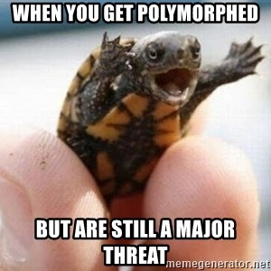 angry turtle - When you get Polymorphed But are still a major threat