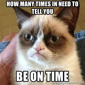 Grumpy Cat  - How many times in need to tell you Be on time