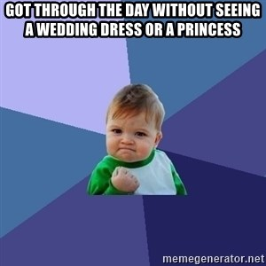 Success Kid - got through the day without seeing a wedding dress or a princess