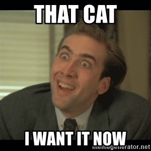 Nick Cage - That cat I want it now