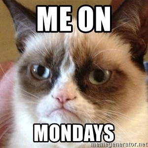 Angry Cat Meme - Me on  Mondays