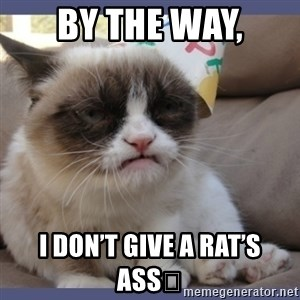 Birthday Grumpy Cat - BY THE WAY, I DON'T GIVE A RAT'S ASS💩
