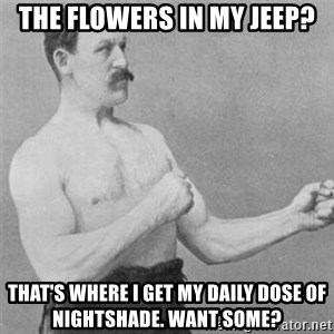 overly manlyman - The flowers in my jeep? That's where I get my daily dose of nightshade. Want some?