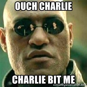 What If I Told You - OUCH CHARLIE CHARLIE BIT ME