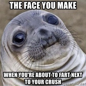 Awkward Seal - the face you make  when you're about to fart next to your crush