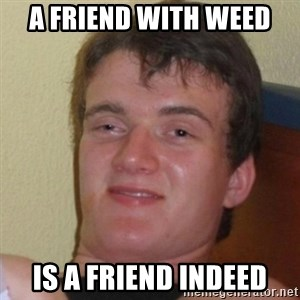 Really Stoned Guy - a friend with weed is a friend indeed