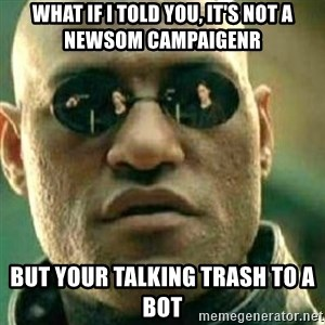 What If I Told You - What if I told you, it's not a Newsom campaigenr But your talking trash to a bot