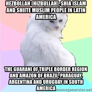 Beauty Addict Kitty - Hezbollah (Hizbullah), Shia Islam and Shiite Muslim People in Latin America  The Guarani of Triple Border Region and Amazon of Brazil, Paraguay, Argentina and Uruguay in South America