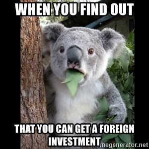 Koala can't believe it - When you find out  that you can get a foreign investment