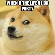 dogeee - When u the life of da party