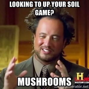Ancient Aliens - Looking to up your soil game? Mushrooms