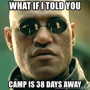 What if I told you / Matrix Morpheus - What if I told you camp is 38 days away