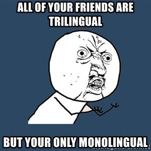 Y U No - all of your friends are trilingual but your only monolingual