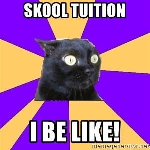 Anxiety Cat - Skool tuition I be like!
