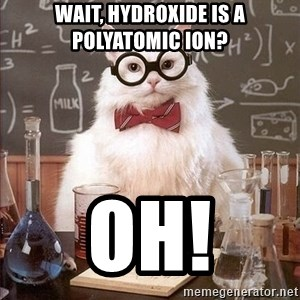 Chemistry Cat - Wait, hydroxide is a polyatomic ion? OH!