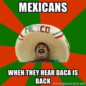 Successful Mexican - mexicans when they hear DACA is back