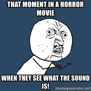 Y U No - That moment in a horror movie  WHEN THEY SEE WHAT THE SOUND IS!
