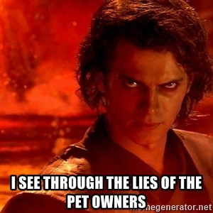 Anakin Skywalker - I see through the lies of the pet owners