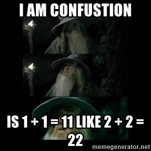Confused Gandalf - I am confustion  is 1 + 1 = 11 like 2 + 2 = 22